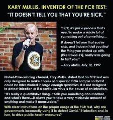 Karry Mullis PCR test